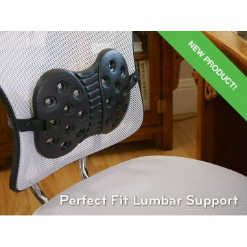 BackJoy Perfect Fit Lumbar Support